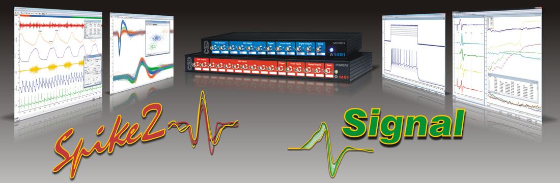 Spike2 Signal