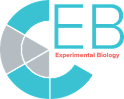 Experimental Biology 2020